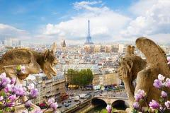 在Notre Dame大教堂,法国的面貌古怪的人 免版税库存照片
