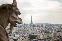 在Notre Dame的面貌古怪的人 库存照片