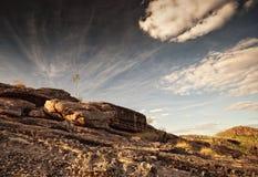 在Nourlangie荒地的唯一树在卡卡杜国家公园 库存照片