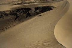 在Nubra谷的沙丘 免版税库存照片