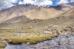 在nubra谷的溪小山 库存图片