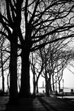 在NYC的冬天日落 库存图片