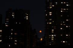 在NYC的红色月亮 库存图片