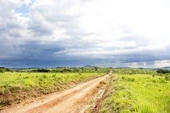 在Nyika高原的土路 免版税图库摄影