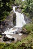 在Nyika高原的瀑布 免版税图库摄影