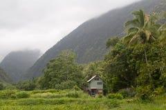 在o谷waipi里面的夏威夷 库存照片
