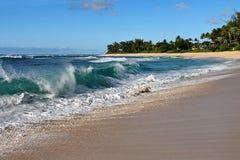 在Oahu's北部岸的碎波 免版税图库摄影