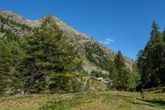 在Oberloo谷, aosta意大利的美好的风景 免版税库存图片