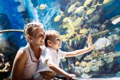在oceanarium的母亲和儿子观看的海洋生活 免版税库存照片