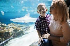在oceanarium的母亲和儿子观看的海洋生活 免版税库存图片
