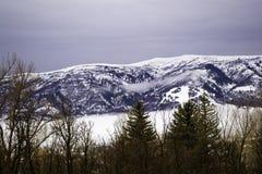 在Ogden峡谷,犹他的积雪的山 库存图片