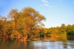 在Ogosta河,保加利亚的日落 图库摄影