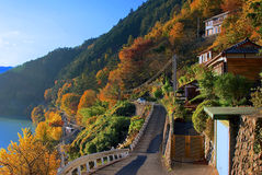 在Okutama,东京,日本的秋天颜色 库存图片