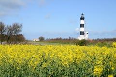在Oléron海岛上的Chassiron灯塔  免版税库存照片