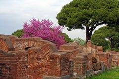 在Ostia Antica的古老墙壁 免版税库存照片