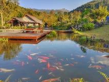 在Oudomxay省,老挝的Namkat Yorrapa 免版税库存图片