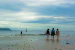 在oxwich海滩的步行 库存图片