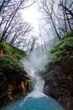 在Oyunuma河的自然footbath 免版税库存照片