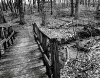 在PA的一座黑白桥梁 图库摄影