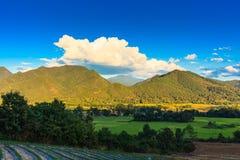 在pai泰国的山 图库摄影