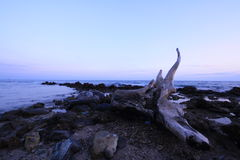 在pala海滩, rayong泰国的日落 库存图片