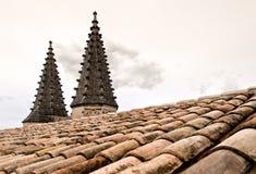 在Palais Des Papes的屋顶顶部圆顶 库存图片