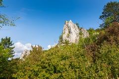 在Palava捷克共和国的白色岩石 在树和森林安置的岩石 免版税库存照片