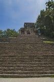在palenque恰帕斯州的台阶 免版税库存图片