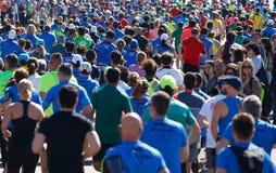 在palma半马拉松人群期间的赛跑者从后面 库存照片