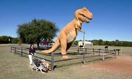 在Paluxy河的恐龙谷在得克萨斯 免版税库存图片