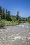在Paonia国家公园,科罗拉多的诺思Fork Gunnison河风景视图 免版税库存照片