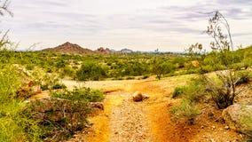 在Papago附近红砂岩小山的供徒步旅行的小道在菲尼斯亚利桑那附近停放 免版税库存照片