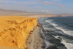 在Paracas国家储备的海滩 库存照片