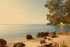 在Parque自然da Arrabida的Portinho da Arrabida海滩 免版税图库摄影