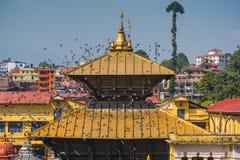 在Pashupatinath寺庙加德满都,尼泊尔的美丽的金黄屋顶 免版税库存照片