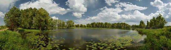 在pavlodar附近的湖 免版税库存图片