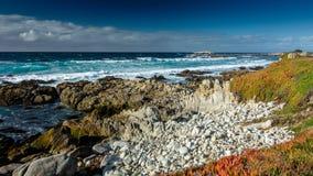 在Pebble海滩, Pebble海滩,蒙特里附近的海洋半岛, Calif 免版税库存照片