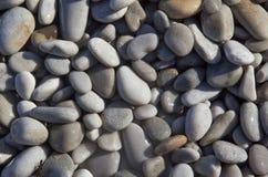 在Pebble海滩的湿木瓦 免版税库存照片