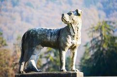 在Peles城堡的狗雕象 免版税库存照片