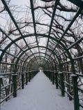 在Peterhof的步行 库存照片