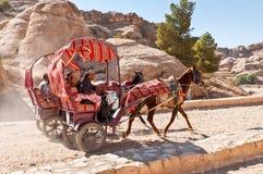 在Petra的马推车,约旦 库存图片