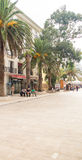在Petrovac江边镇在黑山 免版税库存照片