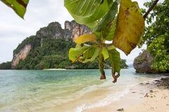 在Phak Bia海岛,奥律县,泰国的透明的海水,宜人和遮荫大气 免版税库存照片