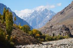 在Phandar谷,北巴基斯坦附近的高山 免版税库存图片