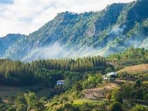 在Phetchabun,泰国的美好的Khao Kho山景 免版税图库摄影