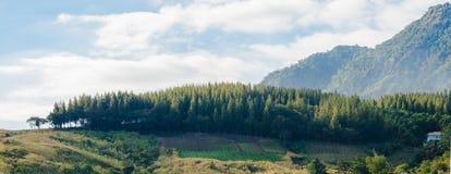 在Phetchabun, Thaila的美好的全景Khao Kho山景 库存图片
