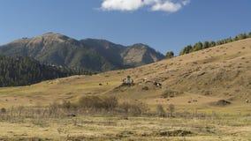 在Phobjikha谷的Chorten 不丹王国 免版税库存图片