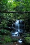 在Phu Soi Dao国家公园的Saithip瀑布 库存图片