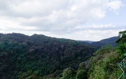 在Phu Thap Boek的风景 免版税库存照片