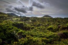 在Pico海岛岸的一块离开的荒地  库存照片